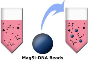 MagSi-DNA-Beads