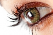 Stem cells can overcome the blindness