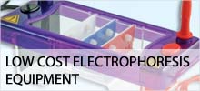 Low Cost Electrophoresis Equipment