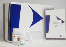 HIV-1 p24 Antigen ELISA 1x 96 well